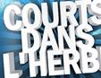 Programme du festival Courts dans l'Herbe 2009